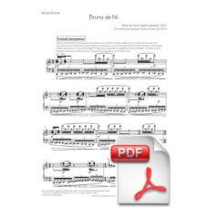 Pagès-Corella: Bruna de Nit for 5 singers and 7 musicians (Vocal Score) [PDF]