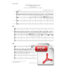 Pagès-Corella: Contrapunctum lucis for String orchestra (Full Score) [PDF] Preview PDF (Free download)
