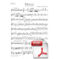 Verdi: Nabucco, Overture for Orchestra (Parts) [PDF]
